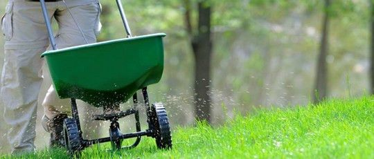 Professional Lawn and Garden Maintenance Company QLD