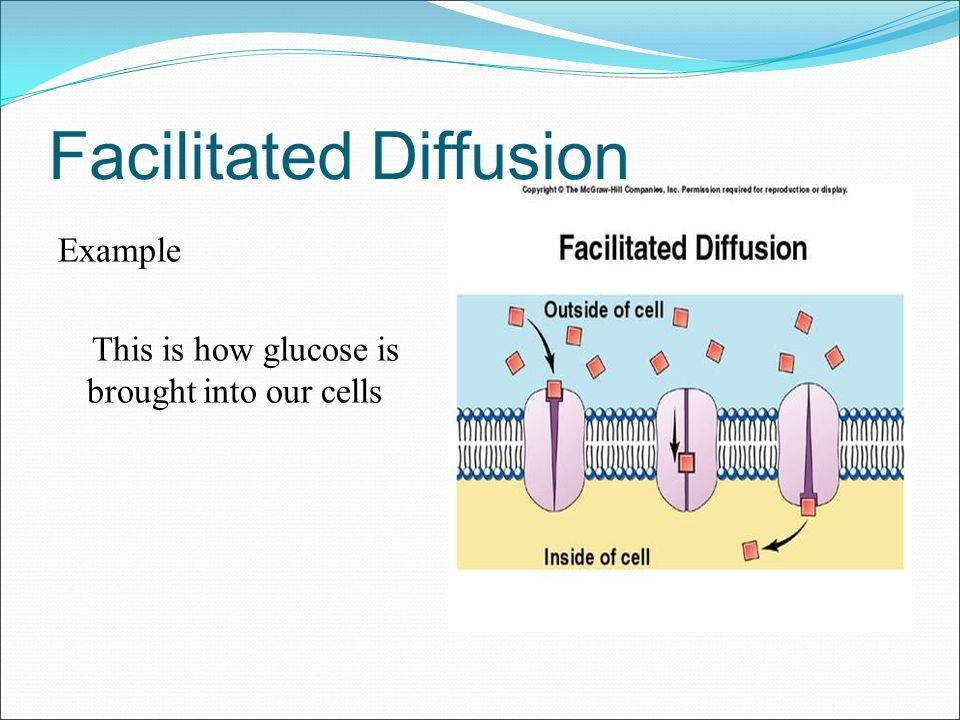 Unit 3: Cellular Transport. Transport through cell membranes The ...