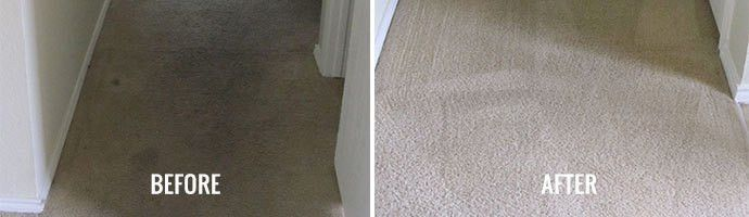Carpet Cleaning Services - Water Damaged Carpets | Indoor Flood