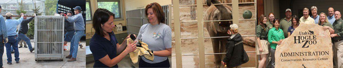Zoo Careers | Utah's Hogle Zoo