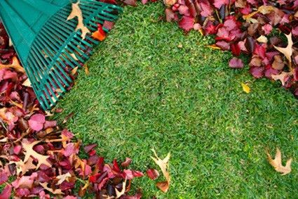 Additional Services - Neighborhood Lawn Care - Call Today! (503 ...