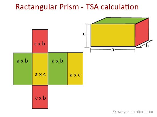 What is total surface area - Definition and Meaning - Math Dictionary