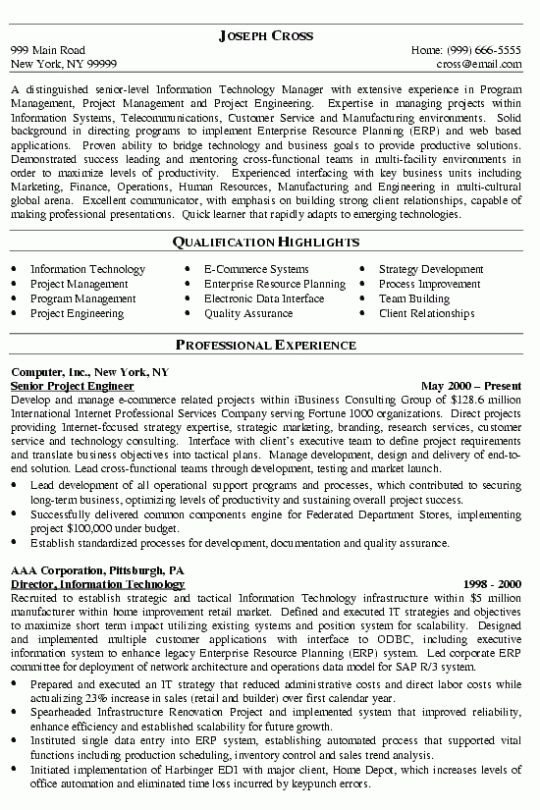 chief operations officer coo resume example. security director ...