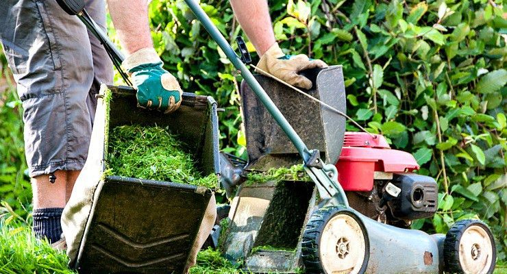 5 On-Demand Platforms for Lawn Care | Street Fight