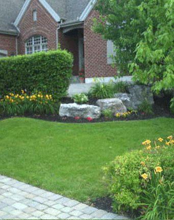 Fertilization | Lunne Lawn & Landscaping