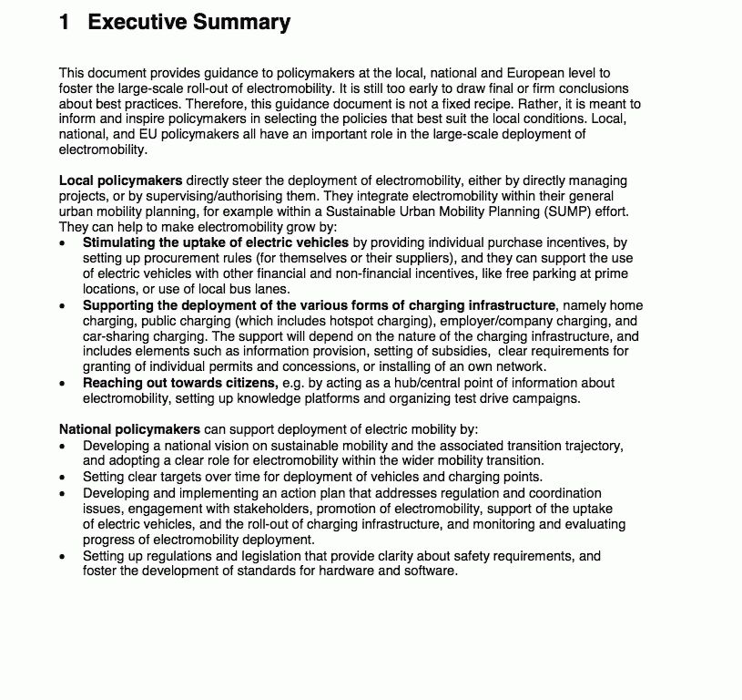 Executive Summary Report Example   Template  Executive Summary Of A Report Example