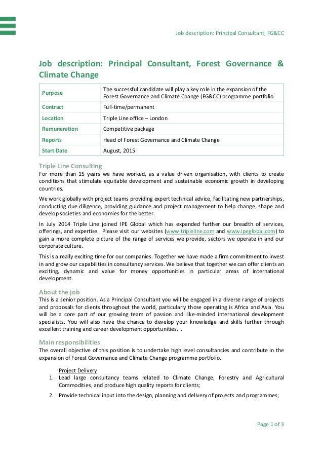 Job Specification-FGCC Principal Consultant position - FINAL.PDF