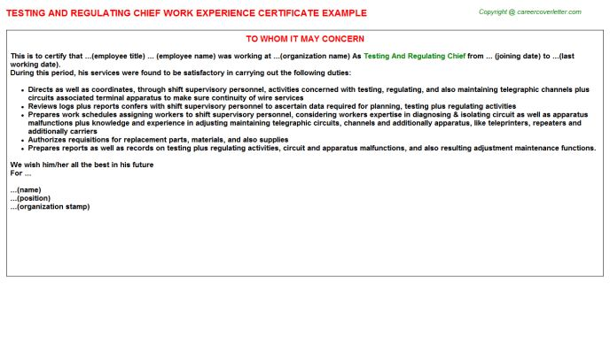 Testing And Commissioning Engineer Work Experience Letters