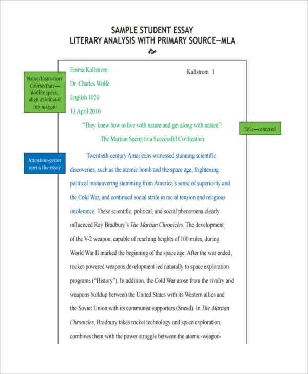 6+ Literary Essay Examples, Samples