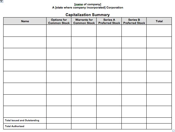 Stock Ledger and Capitalization Summary Report Template | Business ...