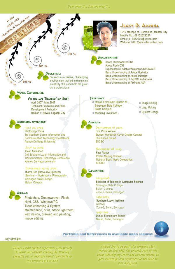 creative resume of chuck d lay of louisiana fun creative idea ...