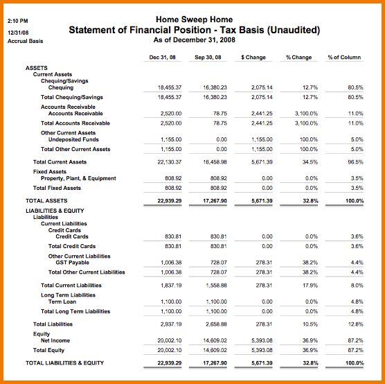12 financial statement example   Financial Statement Form