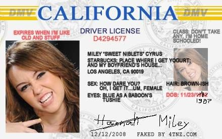 Fake Driver License Id - app-staffing