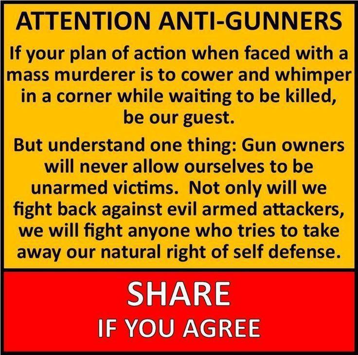 534 best NO TO GUN CONTROL images on Pinterest | Gun control, 2nd ...