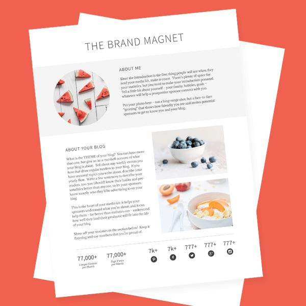 The Brand Magnet - Professional Media Kit Template
