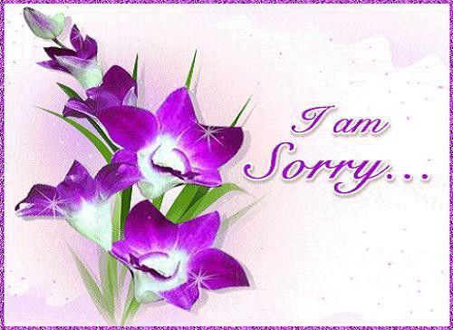 I'm Sorry Messages - 365greetings.com