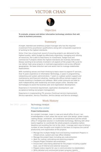 Technology Analyst Resume samples - VisualCV resume samples database