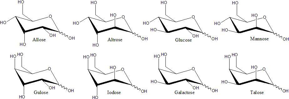 Monosaccharide - Wikiwand
