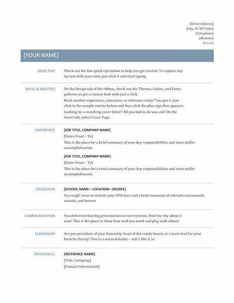 Professional Resume Format - Resume Example
