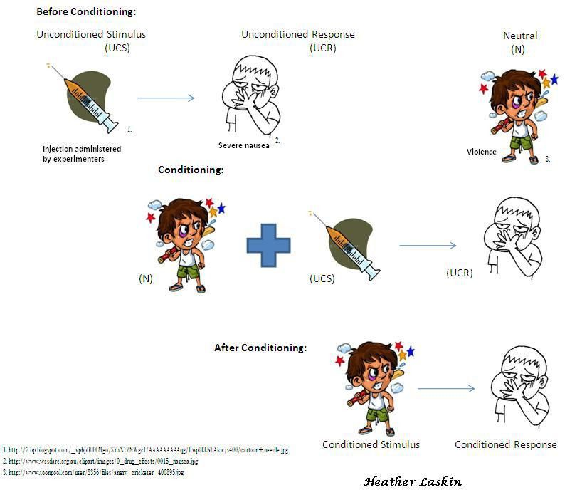 Classical Conditioning | Psychology {Study} | Pinterest ...