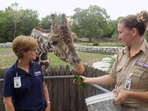Animal attraction: Life of a zookeeper at the Detroit Zoo