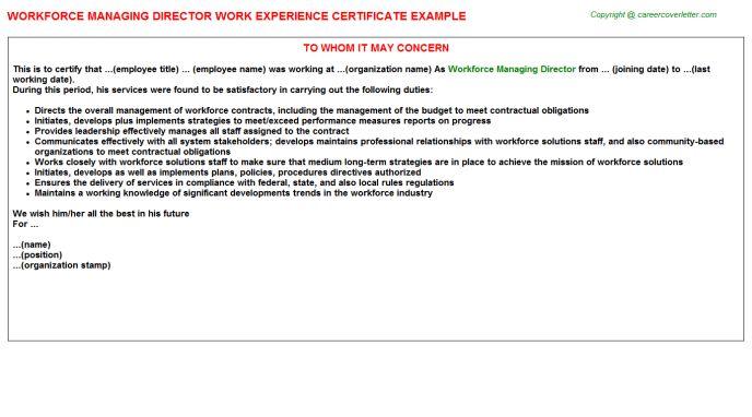 Workforce Managing Director Work Experience Certificate