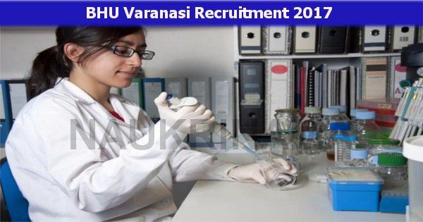research scientist and lab technician jobs 2017