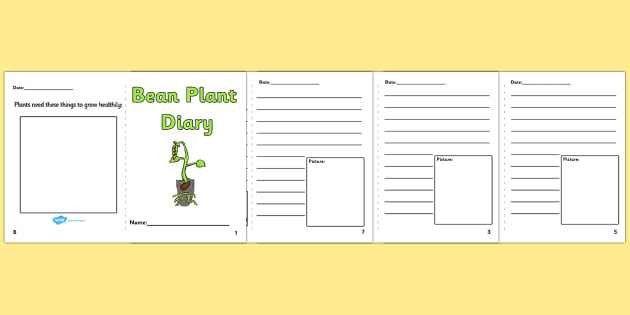 Bean Plant Diary Writing Frames - Bean Plant Diary, Bean