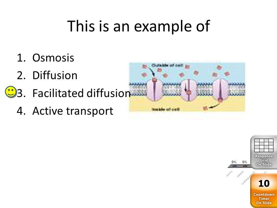 Cell Transport Biology Review ATP is the molecule used for energy ...