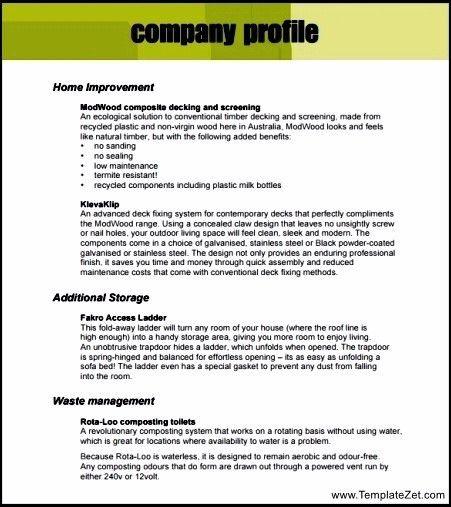 Company Profile Template PDF | TemplateZet