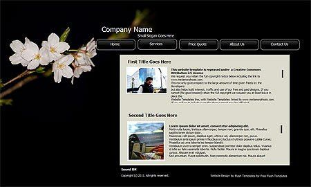 Free Website Templates, Free Web Templates, Flash Templates ...
