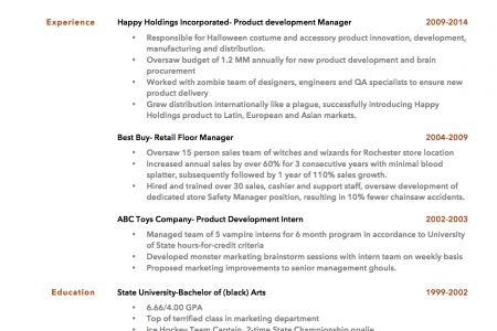 Resume Bullet Points Examples ziptogreenCom resume bullet points ...