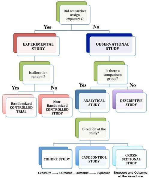 Best 25+ Observational study ideas on Pinterest | Observational ...
