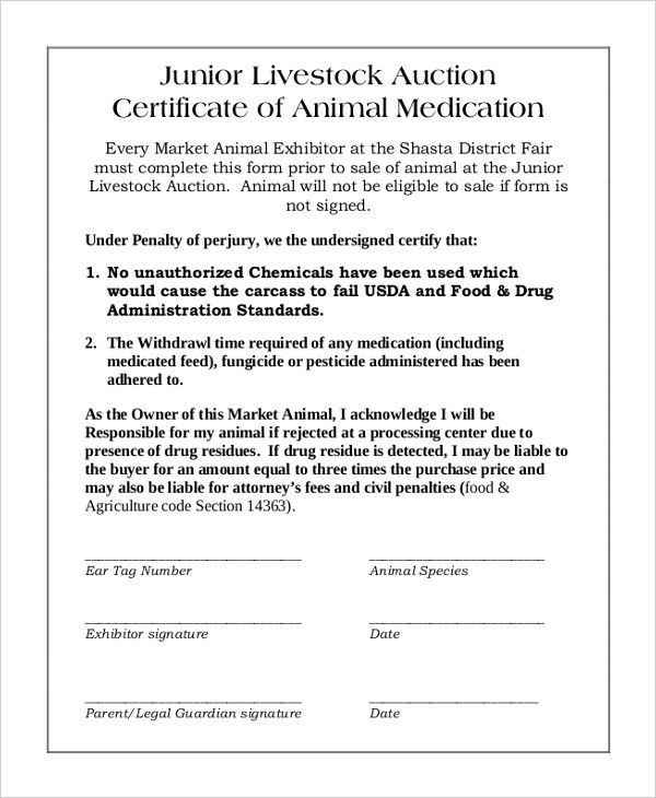 Auction Certificate Template – 7+ Free Word, PDF Documents ...