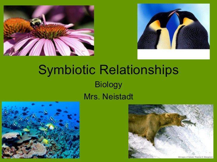 Ecology: Symbiotic Relationships