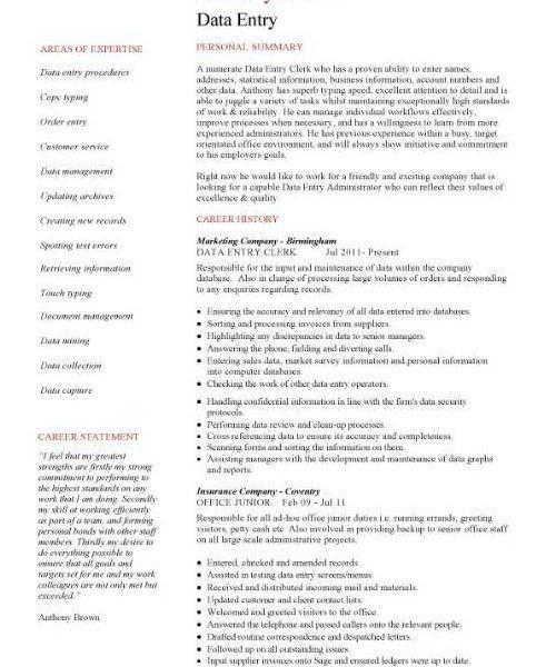 Download Data Entry Resume Sample | haadyaooverbayresort.com