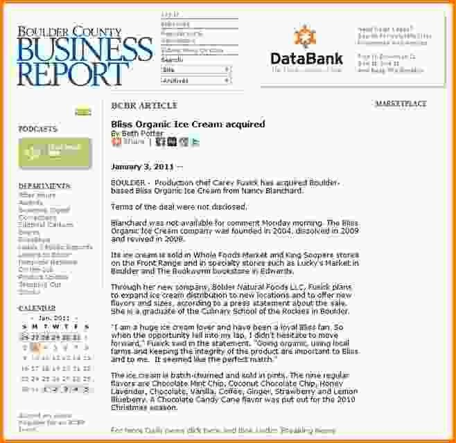 Business Report Examples.74691174.png - LetterHead Template Sample