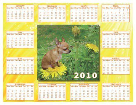 Custom Designed Calendars, Digitally Printed in Full Color