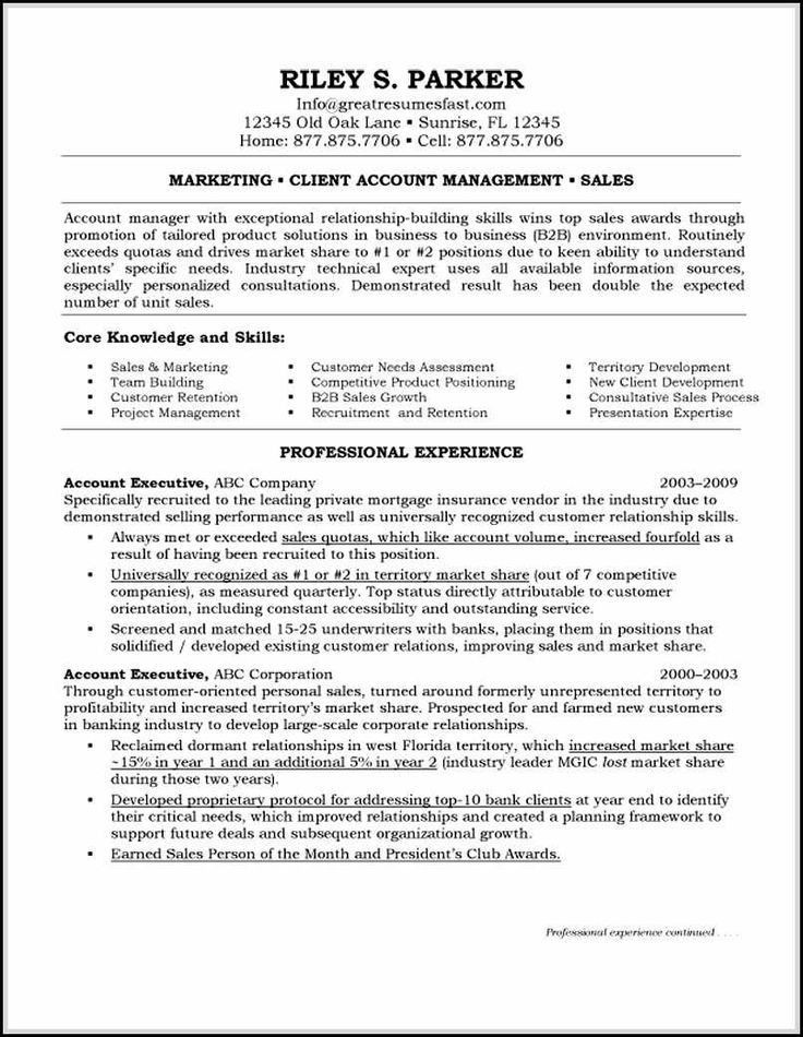 account executive resume objective resume for an executive