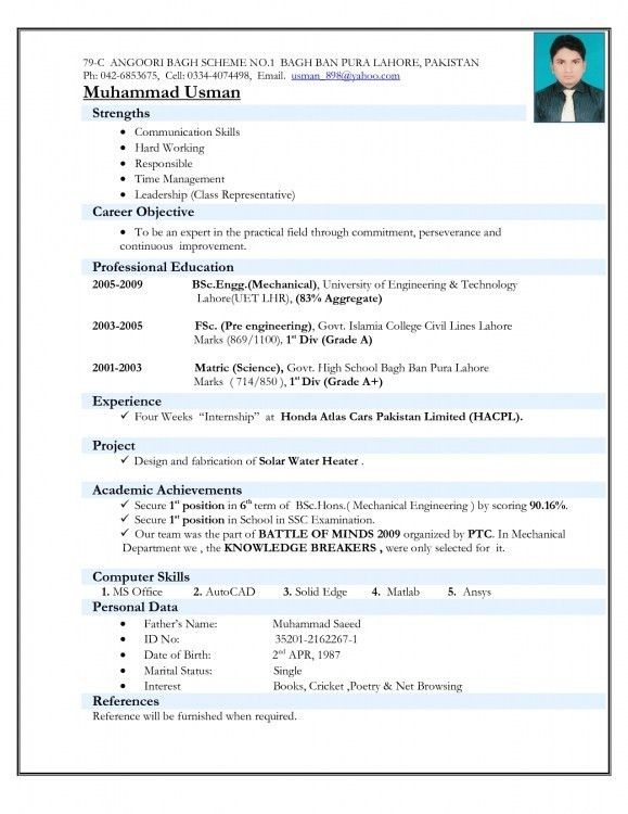 Format For Professional Resume. Professional Resume Examples Civil ...