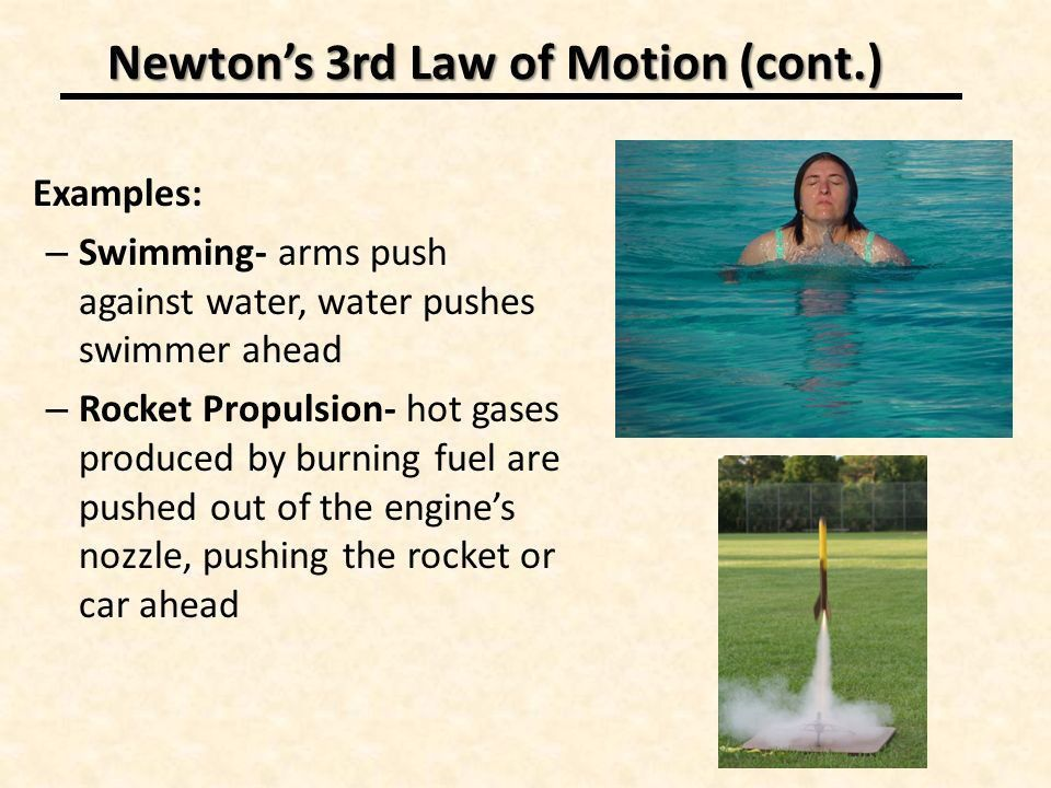 Newton's 3 rd Law of Motion: Momentum. Section 3: The Third Law of ...