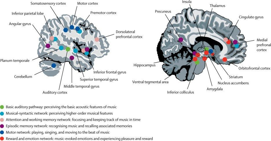 Music-based interventions in neurological rehabilitation - The ...