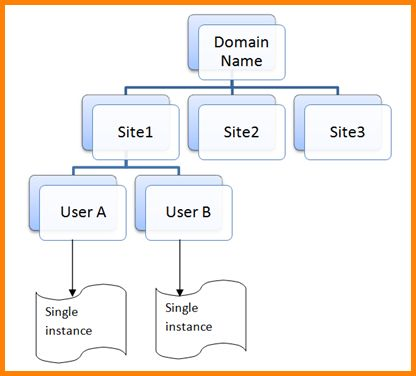 7+ tenant verification | memo templates