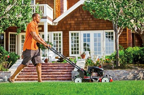 Lawn Care Blog | TruGreen