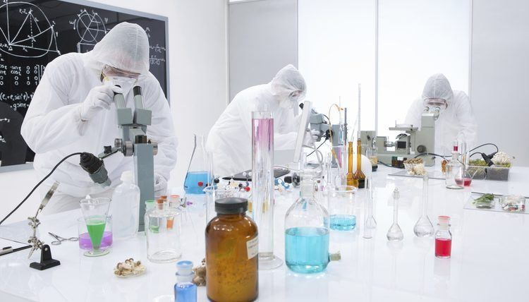Daily Activities of a Toxicologist | Career Trend
