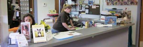 Customer Service Specialist/ Adoption Counselor - Lakeland Animal ...