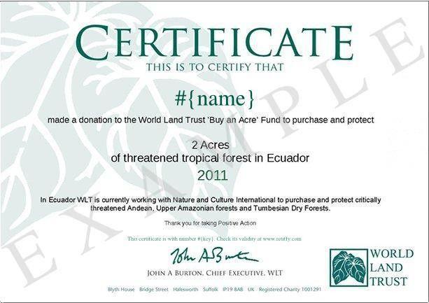 Building example certificate templates | Retiffy