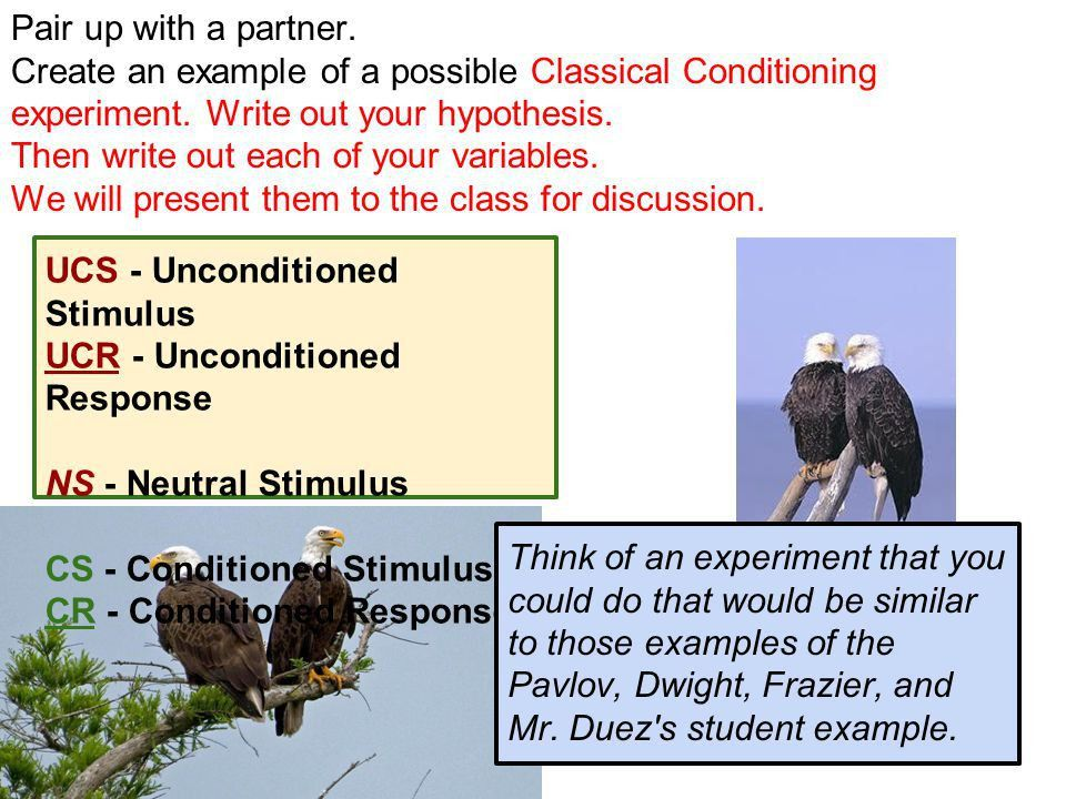 """Psychology LEARNING""""Classical Conditioning"""" - ppt video online ..."""