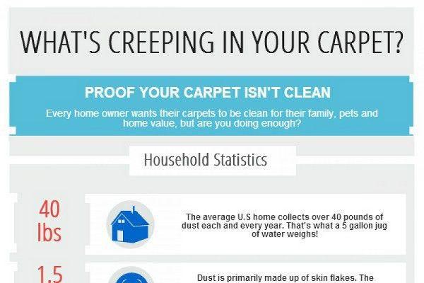 13 Carpet Cleaning Marketing Ideas - BrandonGaille.com