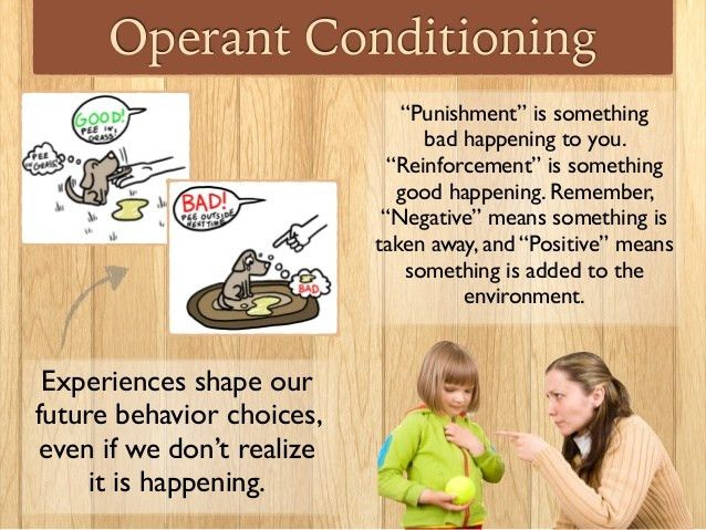 Operant Conditioning 2